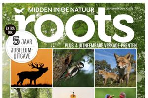 Roots viert verjaardag midden in de natuur