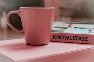 De kennis van mediabureaus